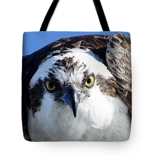 Intense - Osprey Tote Bag