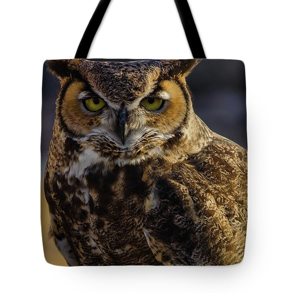 Intense Owl Tote Bag