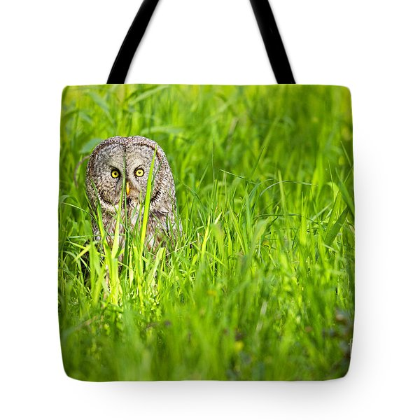Tote Bag featuring the photograph Intensity by Aaron Whittemore