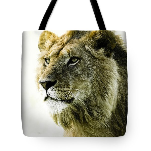 Intensity Tote Bag by Michele Burgess