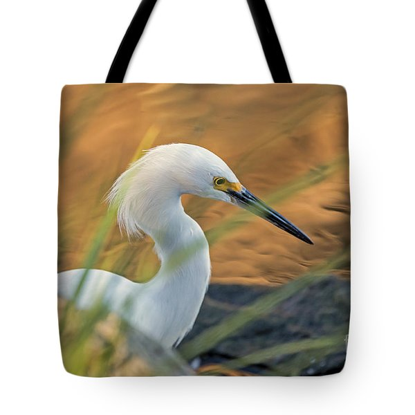 Tote Bag featuring the photograph Intent Hunter by Kate Brown
