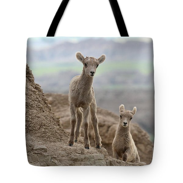 Intent On Exploring Tote Bag