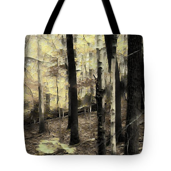 Intentionally Lost Tote Bag