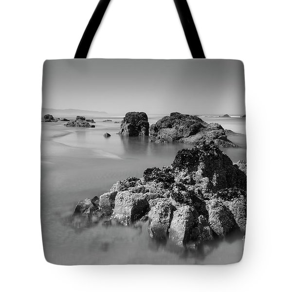 Interesting Rocks In The Water Tote Bag