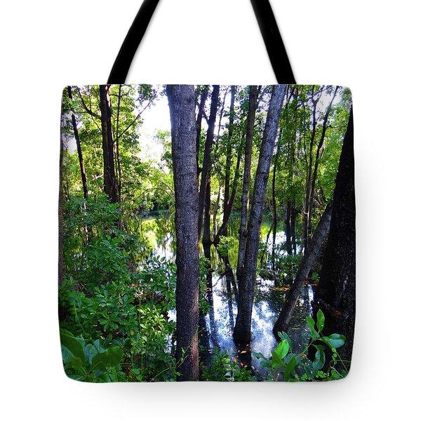 Interior Lake Chale Island Tote Bag