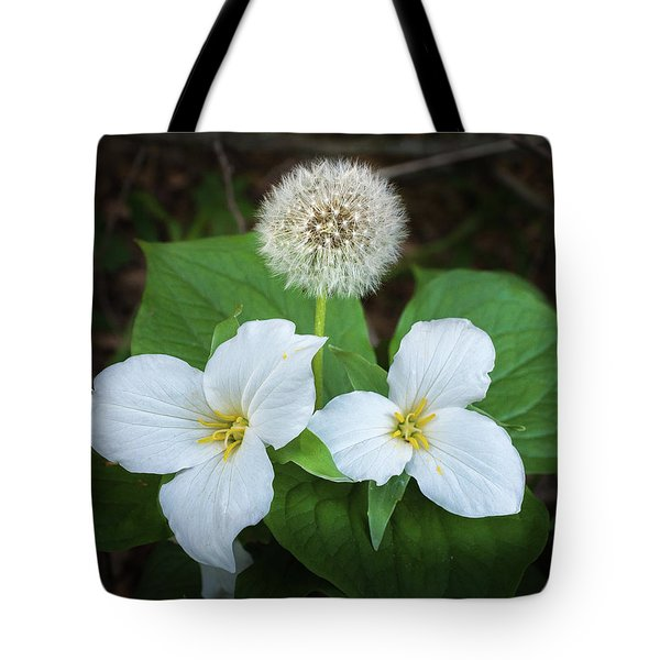 Tote Bag featuring the photograph Interloper by Bill Pevlor