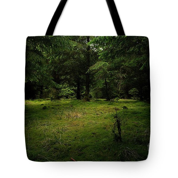 Internationaler Tag Des Waldes - International Day Of Forests - Wood Glade In The Urft Valley Tote Bag