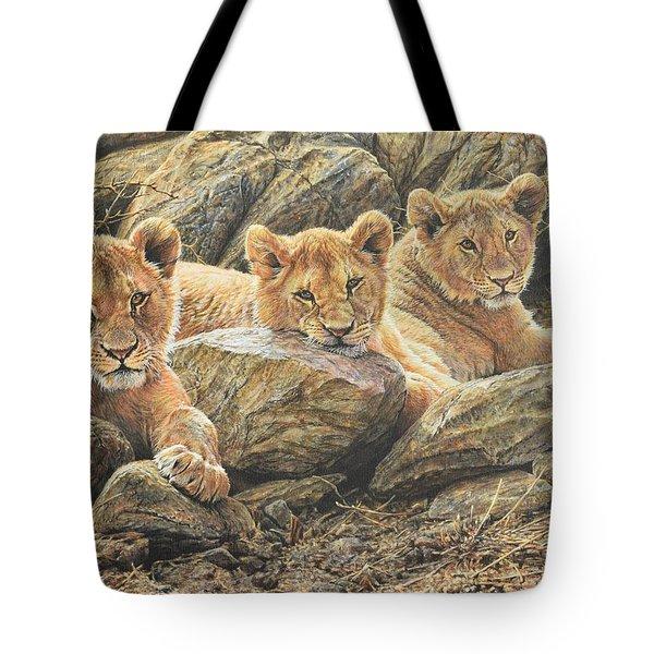 Interrupted Cat Nap Tote Bag