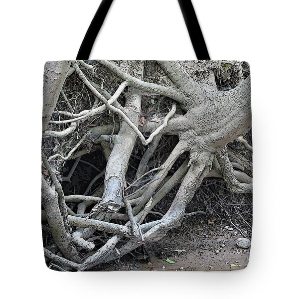 Intertwined Tote Bag by Sandra Church