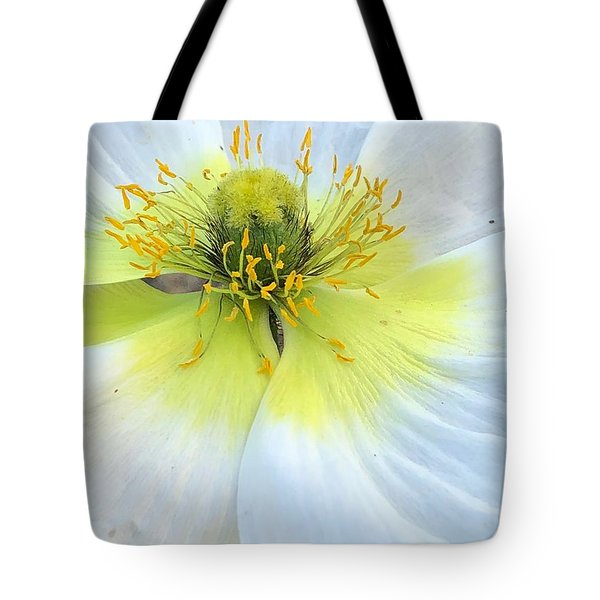 Intimate Light Tote Bag