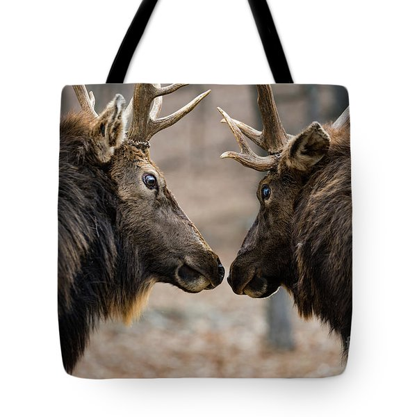 Intimidation Tote Bag
