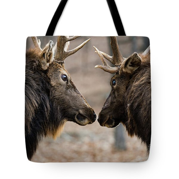 Tote Bag featuring the photograph Intimidation by Andrea Silies