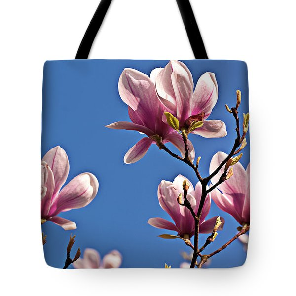 Tote Bag featuring the photograph Into The Blue by Silva Wischeropp