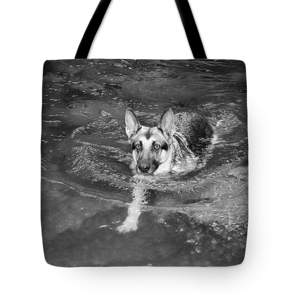 Into The Cold Tote Bag