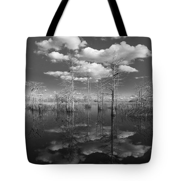 Into The Everglades Tote Bag by Debra and Dave Vanderlaan