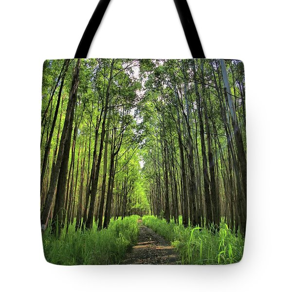 Tote Bag featuring the photograph Into The Forest by DJ Florek