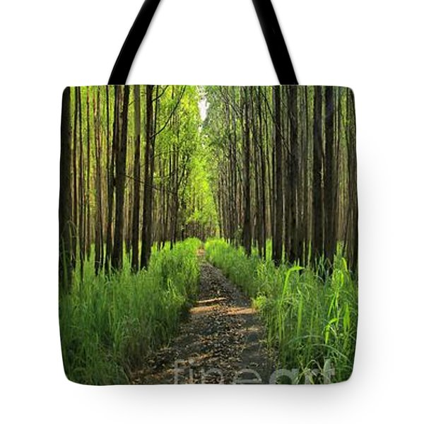 Tote Bag featuring the photograph Into The Forest I Go by DJ Florek