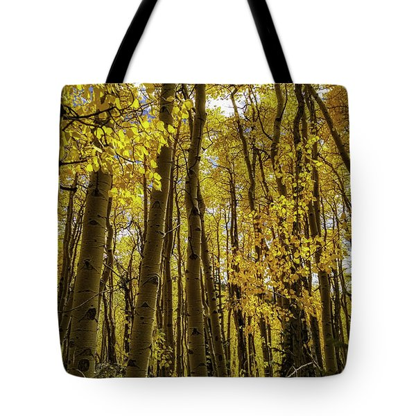 Into The Gold Tote Bag