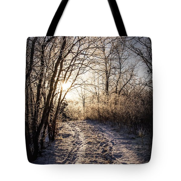 Into The Light Tote Bag by Annette Berglund