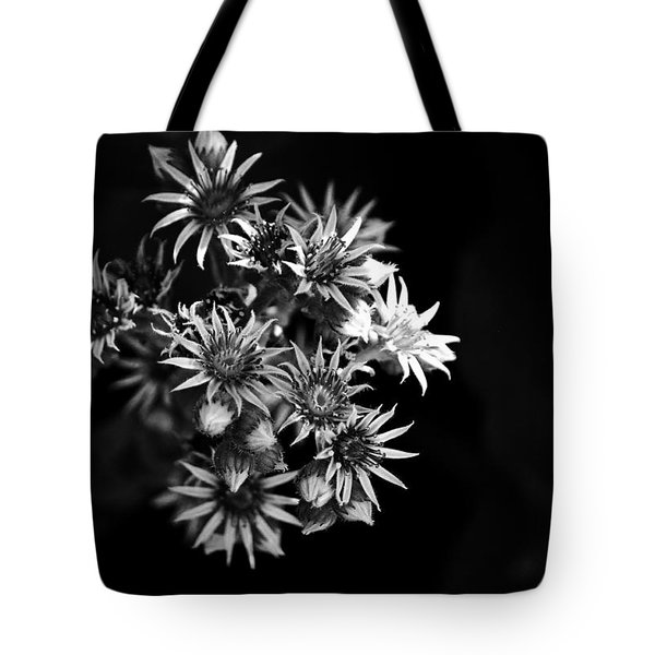 Tote Bag featuring the photograph Into The Light by Silke Brubaker