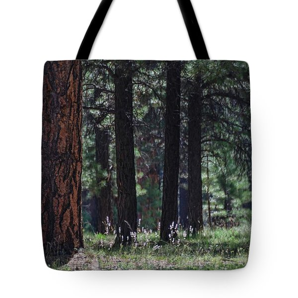 Into The Light There Be Shadows Tote Bag