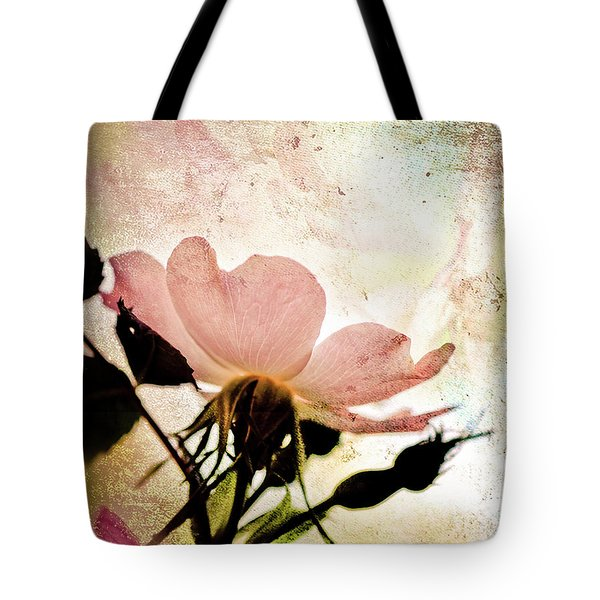 Tote Bag featuring the photograph Into The Mystic by Elaine Manley
