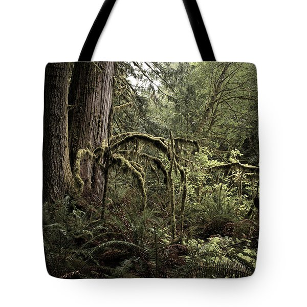 Into The Mystic Tote Bag