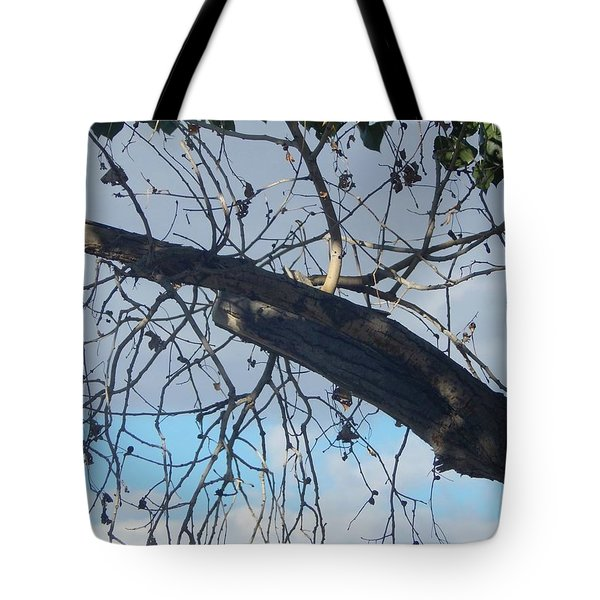 Tree Leaves Into The Sky Tote Bag