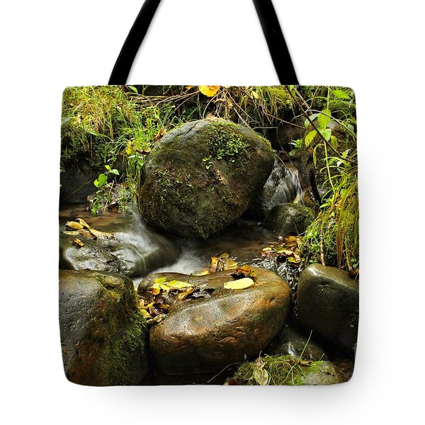 Into The Stream 4 Tote Bag