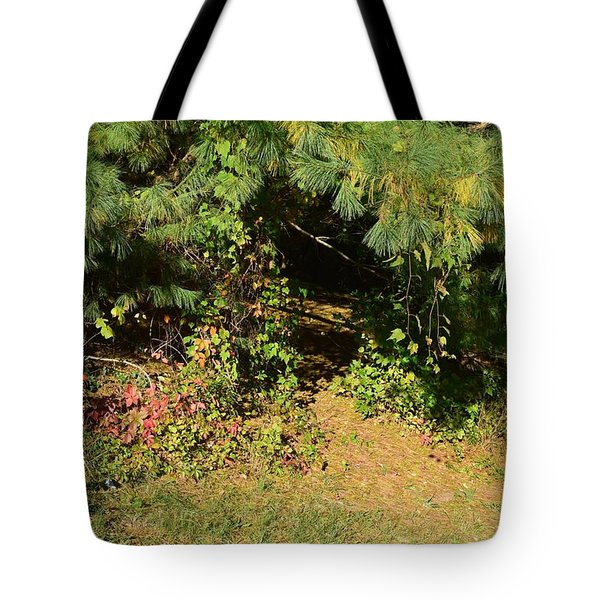 Into The Unknown 1 Tote Bag