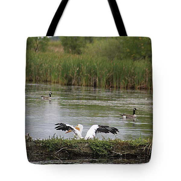 Tote Bag featuring the photograph Into The Water by Alyce Taylor