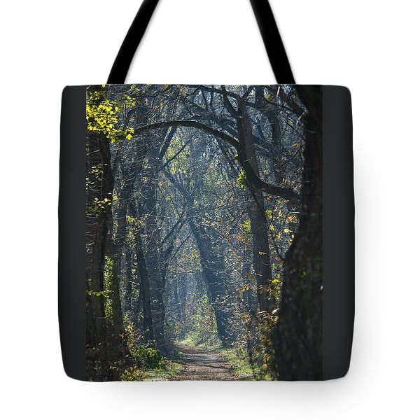 Into The Wood Tote Bag
