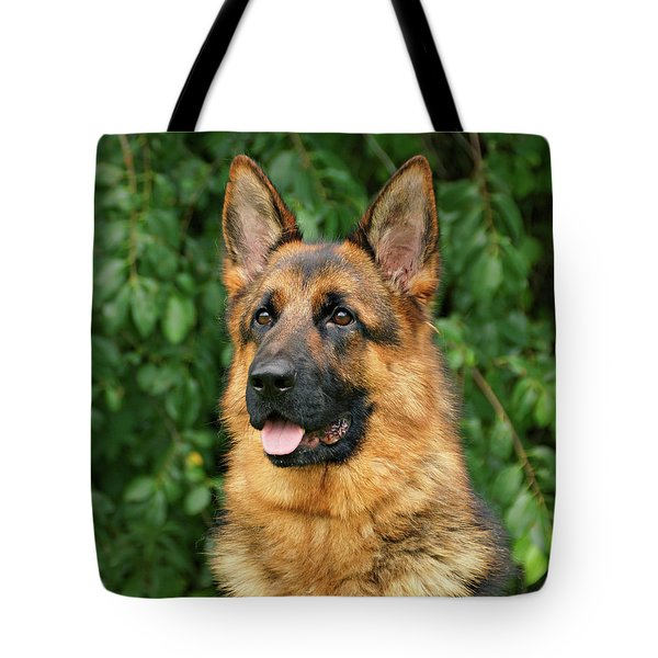 Tote Bag featuring the photograph Intriguing Ida by Sandy Keeton