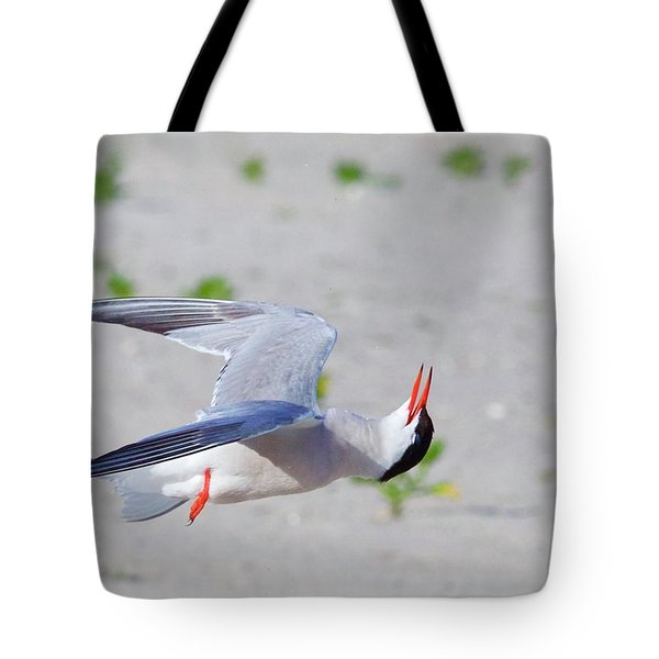 Inverted Flight Tote Bag