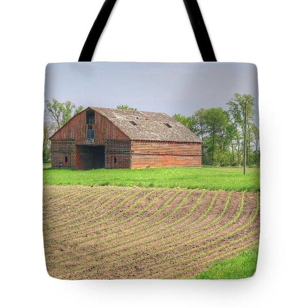 Iowa Corn Sprouts Tote Bag