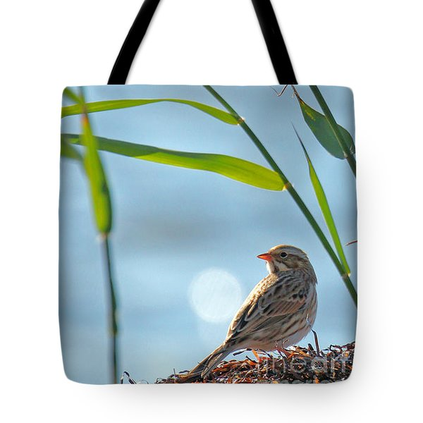 Ipswich Sparrow Tote Bag