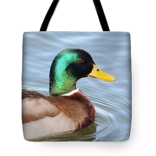 Iridescence Tote Bag by Anita Oakley