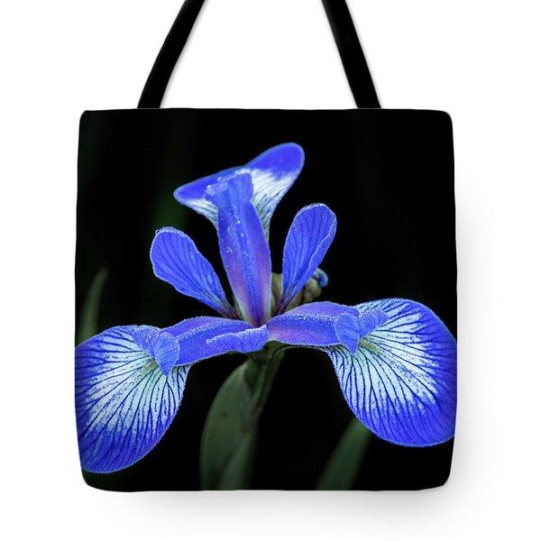 Iris #2 Tote Bag
