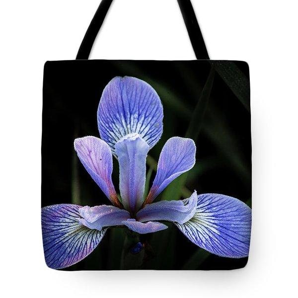 Iris #4 Tote Bag