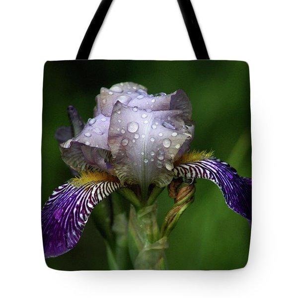 Iris After The Rain 1409 H_2 Tote Bag