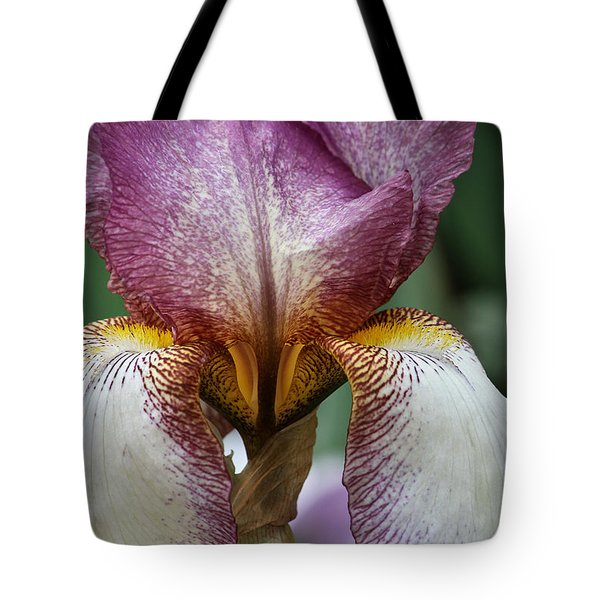 Iris Close Up Tote Bag by Shirley Mitchell