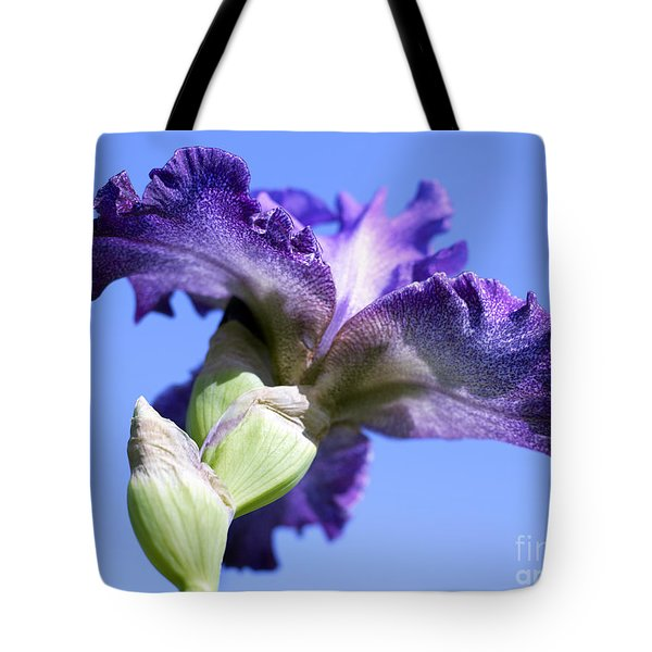 Iris Flowers Tote Bag by Tony Cordoza