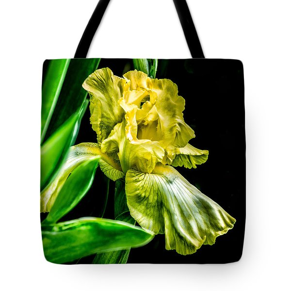 Tote Bag featuring the photograph Iris In Bloom by Richard Ricci