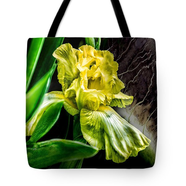 Tote Bag featuring the photograph Iris In Bloom Two by Richard Ricci