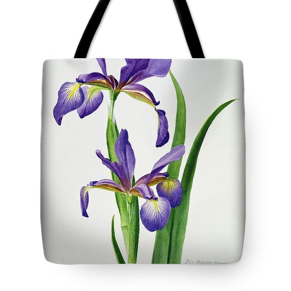 Iris Monspur Tote Bag by Anonymous