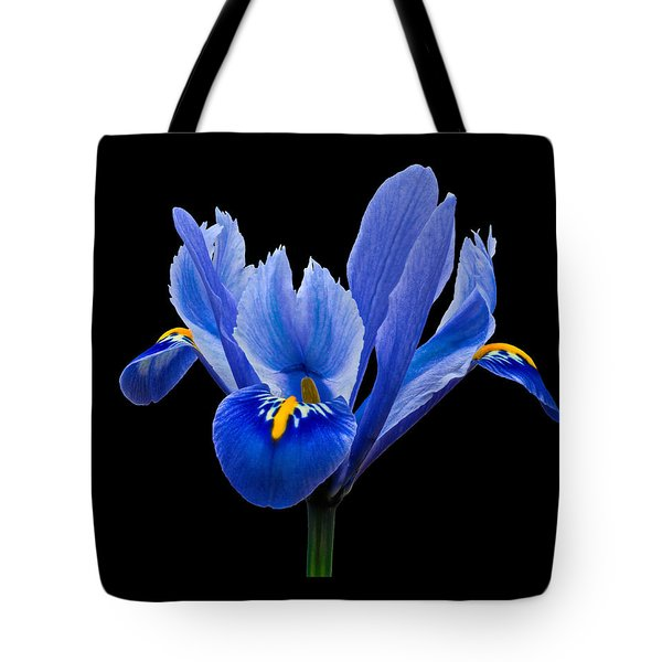 Iris Reticulata, Black Background Tote Bag