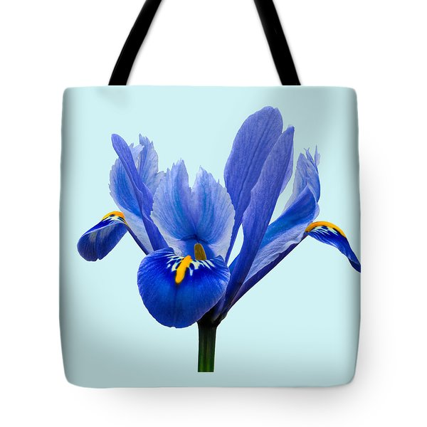 Iris Reticulata Blue Background Tote Bag