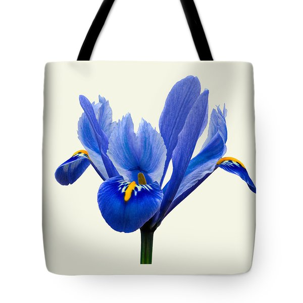 Iris Reticulata, Cream Background Tote Bag