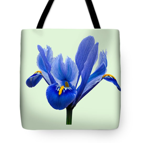 Iris Reticulata, Green Background Tote Bag