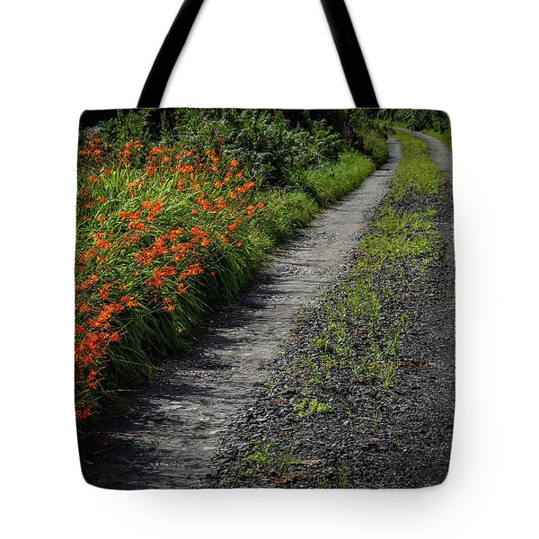 Tote Bag featuring the photograph Irish Country Road Lined With Wildflowers by James Truett